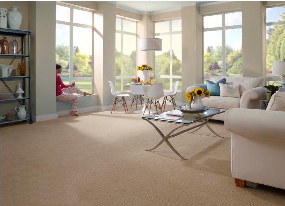Coles Fine Flooring | Carpet