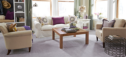 Simply STAINMASTER™ carpet