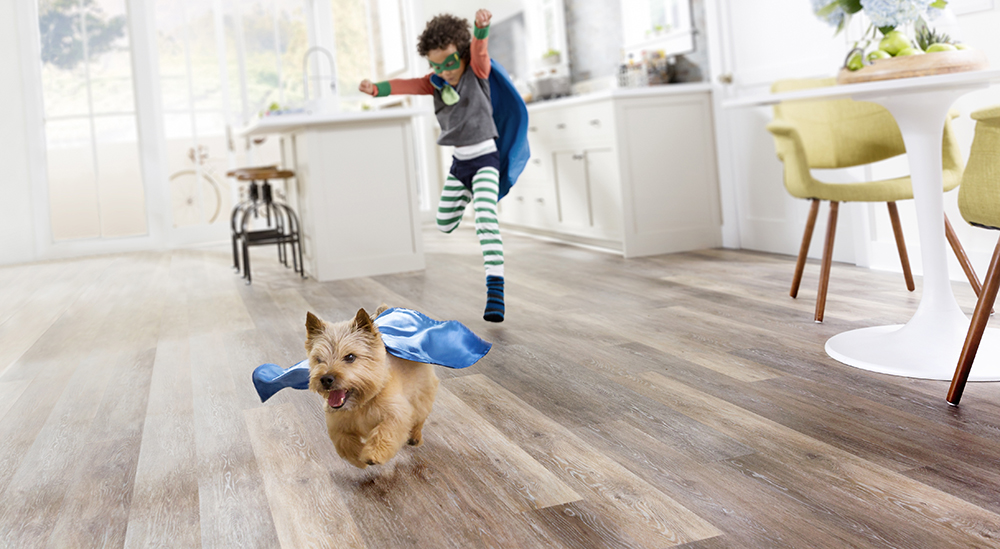 Coles Fine Flooring   StainMaster