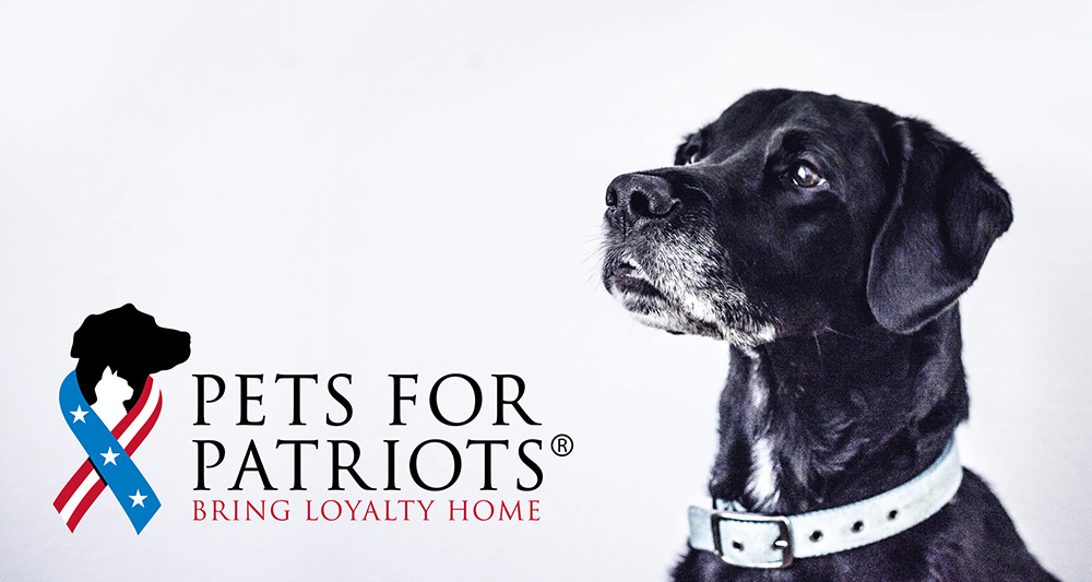 Coles Fine Flooring | pets for patriots