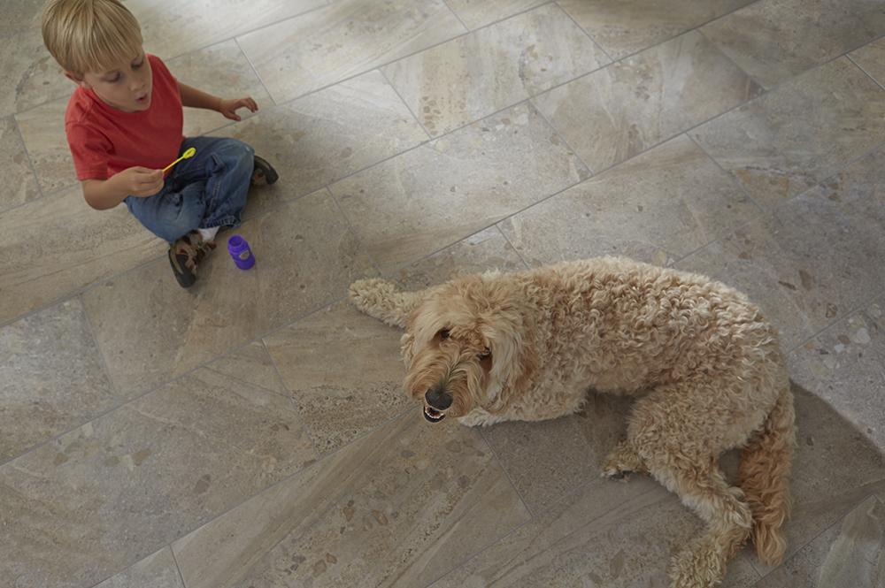 Coles Fine Flooring | Pet-friendly Decorating Tips