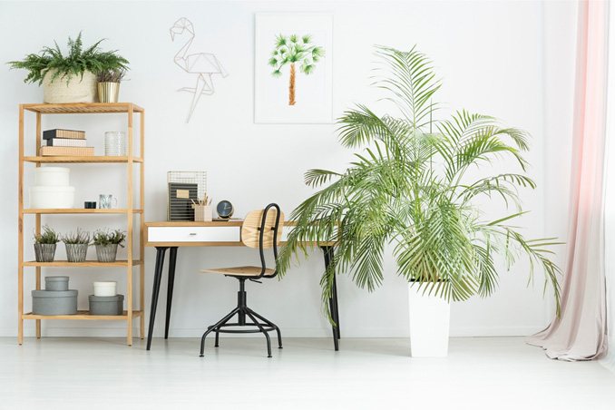 Coles Fine Flooring | Home Office Design