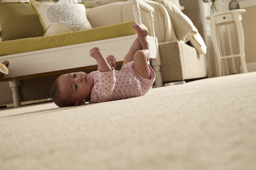 Coles Fine Flooring | Wool Carpet