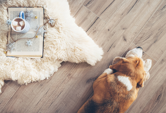 Coles Fine Flooring | Get your home ready for holiday guests