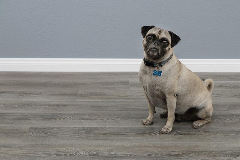 Coles Fine Flooring | Benefits of Laminate