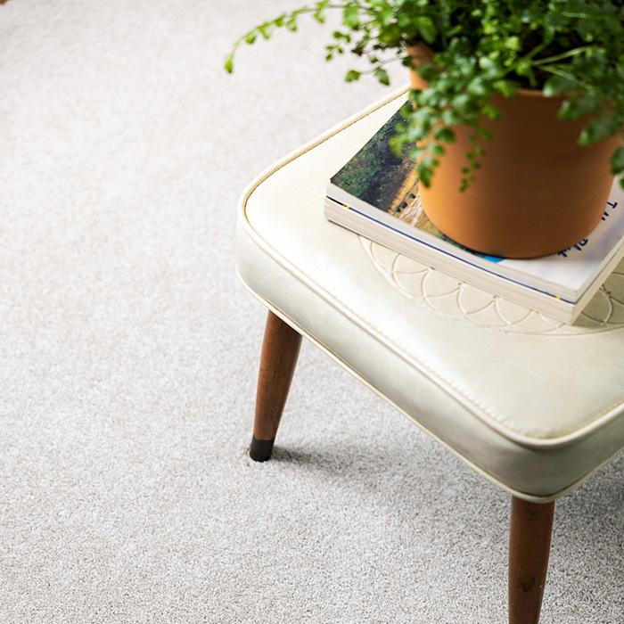 Coles Fine Flooring | Anso Nylon carpet